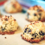My Famous Vegan Chocolate Chip Macaroon Recipe!