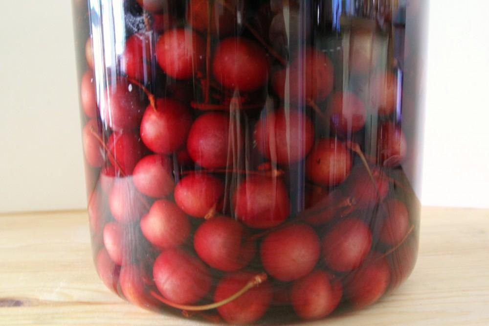 boozy cherries |juliehasson.com
